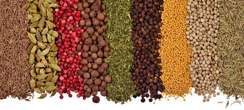 Heap of different dry spices on a white Stock Image