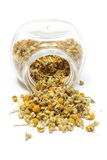 Heap of dried camomile in glass jar Stock Images