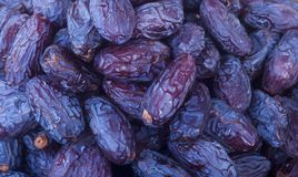 Heap of dried dates close-up. royalty free stock photography