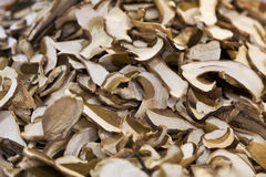 Heap of dried edible mushrooms Royalty Free Stock Images