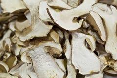 Heap of dried edible mushrooms Royalty Free Stock Photo