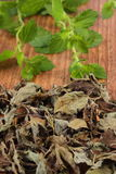 Heap of dried and fresh lemon balm on wooden table, herbalism Royalty Free Stock Photo