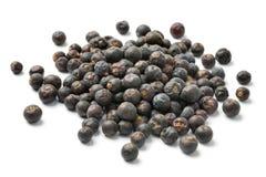 Heap of dried juniper berries Royalty Free Stock Images