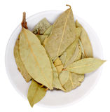 Heap of dried laurel leaf on white plate Royalty Free Stock Image