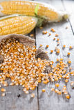 Heap of dried Maize Stock Image