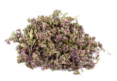 Heap of dried marjoram Royalty Free Stock Image