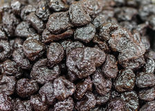 Heap of dried prunes (Prunus domestica) Royalty Free Stock Photos