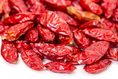Heap of Dried Red Peppers Piri-Piri Royalty Free Stock Image