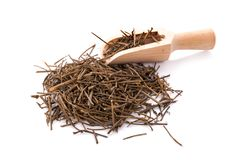 Heap of dried rosemary needles on white background royalty free stock image