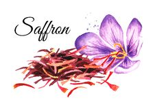 Heap of dried saffron spice with a flower. Watercolor hand drawn illustration  isolated on white background.  stock illustration