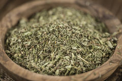 Heap of dried Stevia leaves Stock Images