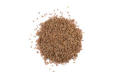 Heap of dry caraway seeds Stock Image