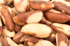Brazil nuts. Heap of dry delicious Brazil nuts closeup Royalty Free Stock Photography