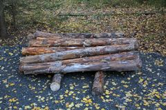 Heap of dry firewood. Dry firewood for firing and heating lie in a pile among the fallen leaves stock photography