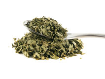 Heap of dry isolated coriander on the spoon Stock Photography