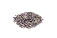 Heap of dry lavender tea, isolated on white background Stock Photography