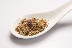 Heap of dry medical herbal tea in white ceramic spoon Stock Image