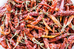 Heap of the dry red chili. Peppers Royalty Free Stock Photos