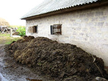 Heap of the dung besides the shed Royalty Free Stock Photography