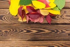 Heap of fallen autumn leaves red yellow and green color on old worn rustic brown wooden table. With copy space royalty free stock photography