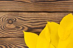 Heap of fallen autumn leaves yellow color in corner of old worn rustic brown wooden table. With copy space stock images