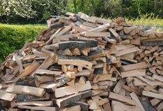 Heap of firewood in a garden Stock Image