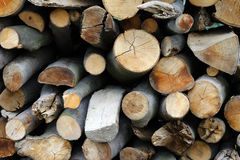 Heap of firewoods Stock Photo