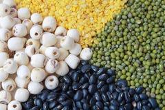 Heap four grains. Stock Image