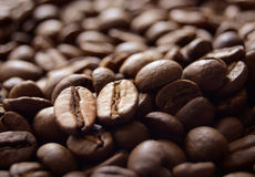 Heap of Fragrant Roasted Brown Coffee Beans Royalty Free Stock Photos