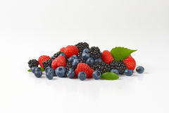 Heap of fresh berries Stock Images