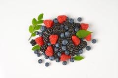 Heap of fresh berries Stock Image