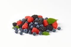 Heap of fresh berries Stock Photos