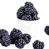 Heap of Fresh Blackberries in a bowl isolated. On white background, close up. Summer berries, selective focus, macro Royalty Free Stock Photos