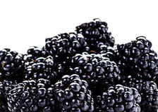 Heap of Fresh Blackberries isolated on white Royalty Free Stock Photos