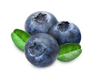 Heap of fresh blueberries with leaves Royalty Free Stock Photography