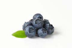 Heap of fresh blueberries Stock Image