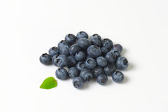 Heap of fresh blueberries Royalty Free Stock Photos