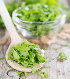 Heap of fresh flat leaf Parsley Royalty Free Stock Photo