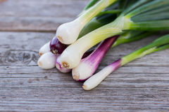 Heap of fresh, green and red onion on the wooden background close up. Bunch of fresh green and red onions on dark or neutral wooden background Royalty Free Stock Images
