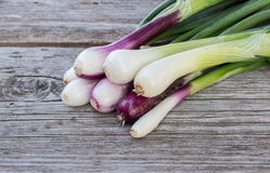 Heap of fresh, green and red onion on the wooden background close up. Bunch of fresh green and red onions on dark or neutral wooden background Royalty Free Stock Photo