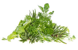 Heap of fresh Herbs isolated on white. Background royalty free stock photography