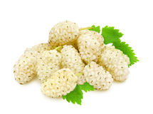 Heap of fresh mulberries. Heap of fresh ripe white mulberry berries with leaves isolated on white background. Design element for product label, catalog print Stock Image
