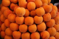 A heap of fresh picked apricots Royalty Free Stock Images