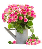 Heap of fresh pink roses Stock Photo