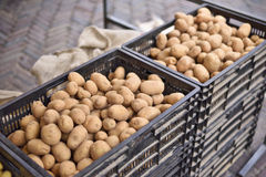 Heap of fresh potatoes on a weekly market Royalty Free Stock Photography