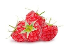 Heap of fresh raspberries Stock Images