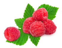 Heap of fresh raspberries. Heap of fresh ripe raspberry berries with leaves isolated on white background. Design element for product label Royalty Free Stock Photos