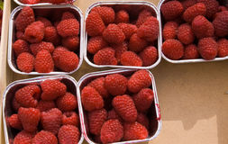 Heap of fresh raspberry. Closeup heap of fresh raspberry background Stock Photos