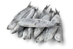 Heap of fresh raw frozen sardines. Isolated on white background Royalty Free Stock Images