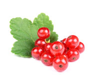 Heap of Fresh Red Currant with Green Leaf. Isolated on White Background Stock Photo